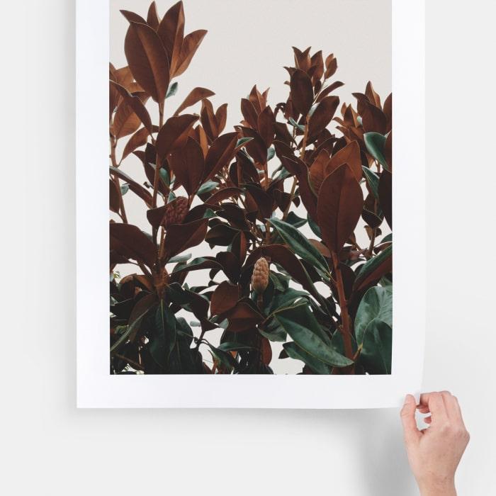 selling prints
